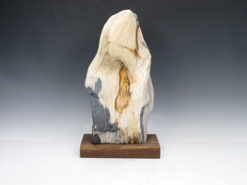 珪化木 木化石