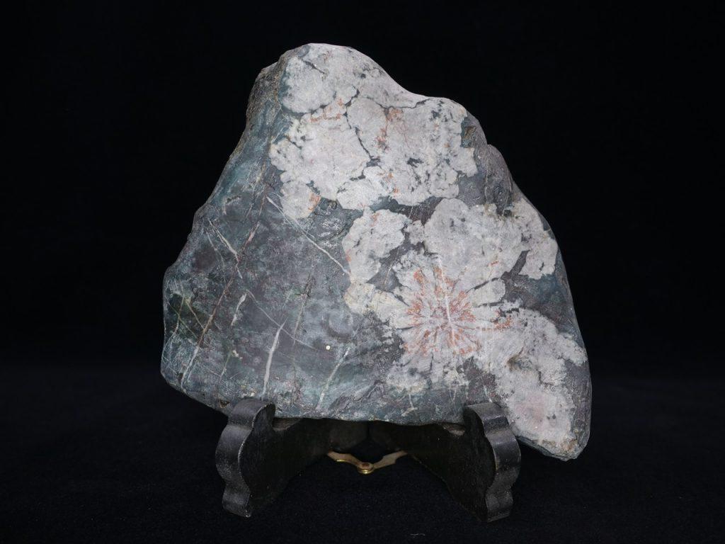 【水石、鑑賞石】「菊花石」を買取り致しました。